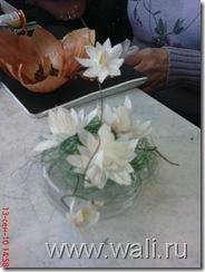 Из чесночной шелухи иногда вырастают вот такие лилии