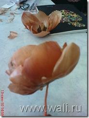 А этот цветочек вырос в моих руках)))
